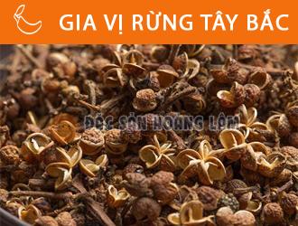 banner-giavirungtaybac