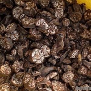 chuoi hot rung kho 300x300 - Chuối hột rừng khô