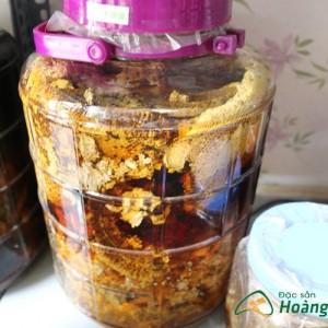 mat ong rung chuan 1 300x300 - Đặc sản Tây bắc Hoàng Lâm, đặc sản vùng cao dân tộc Tây Bắc chính hiệu