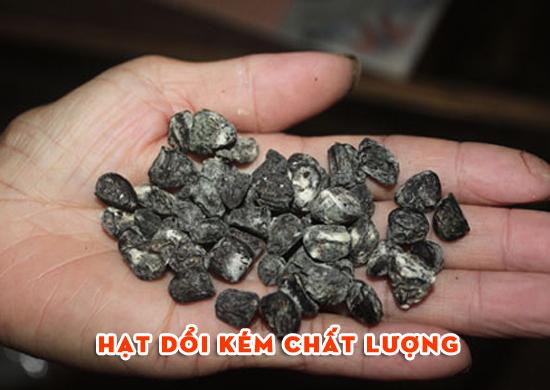 hat doi rung nhai kem chat luong - 100g Hạt dổi rừng