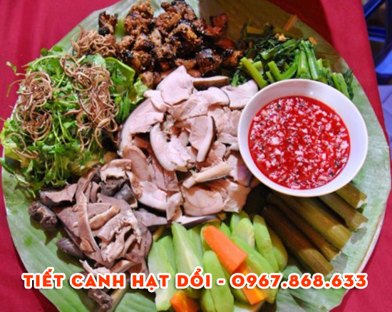 tiet-canh-hat-doi-rung