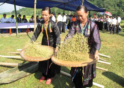 le hoi com moi - Lễ hội cốm mới của các dân tộc vùng cao