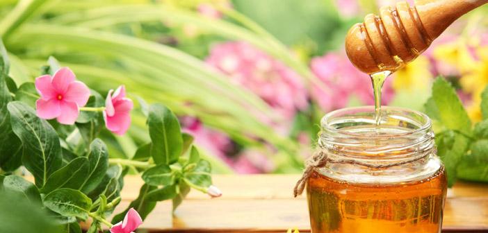 mat ong hoa rung 2 - Mật ong hoa rừng - bài thuốc tốt cho sức khỏe