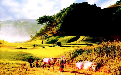 van hoa dan toc mong - Điểm hẹn văn hóa truyền thống
