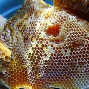 sap ong rung 300x300 - Sáp tổ ong rừng