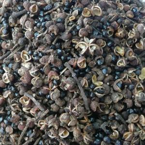 mackhen2 15390802956101078539134 300x300 - Hạt mắc khén Điện Biên hay còn gọi là hạt tiêu rừng