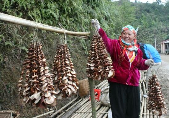 nam huong rung 1 - Đậm đà cá nướng Tây Bắc