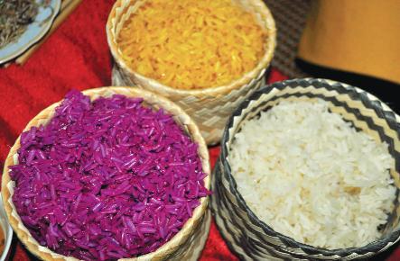 Gạo Điện Biên nổi tiếng với sự dẻo thơm, trắng bóng, đậm đà.